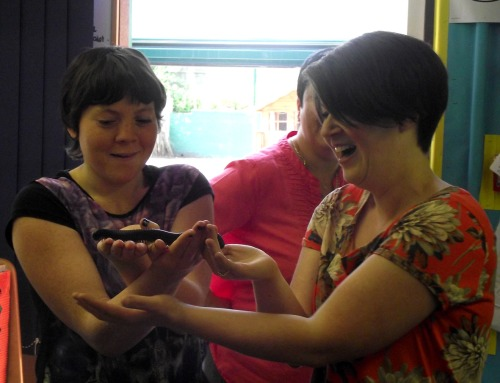 Handling a Giant Millipede