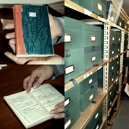 Besides insect collection, the Manchester Museum's Entomology department retains archive originated from the people who used to work in the Museum or who donated their collections