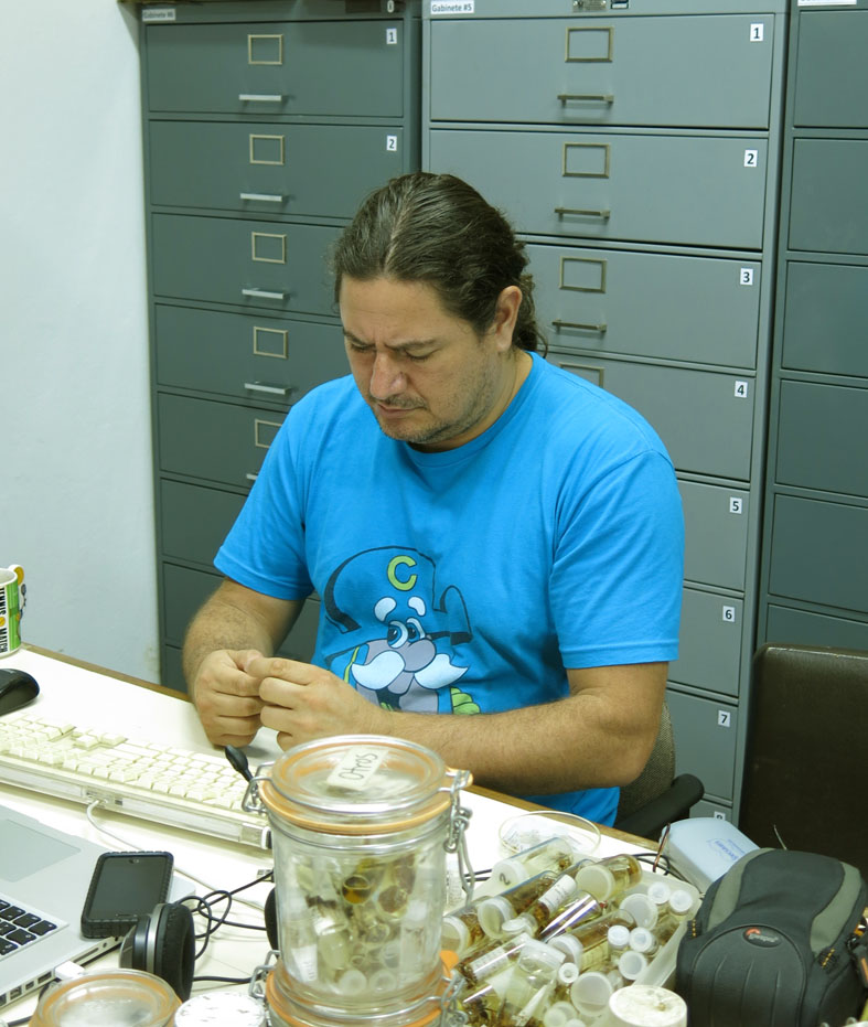 Carlos Viquez, the curator of the arachnid collections, INBio, San Jose, Costa Rica