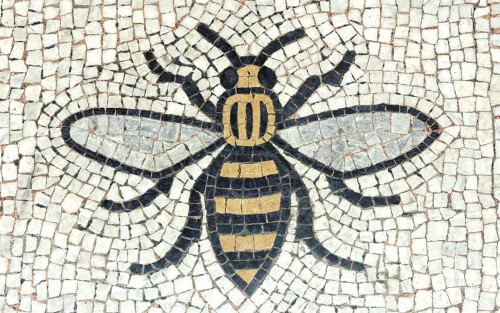 03_Manchester Bee
